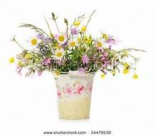 flowers in buckets - Yahoo Image Search results