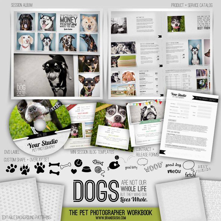 Pet Photographer Workbook - comprehensive business, marketing and sales set by Brand Sushi