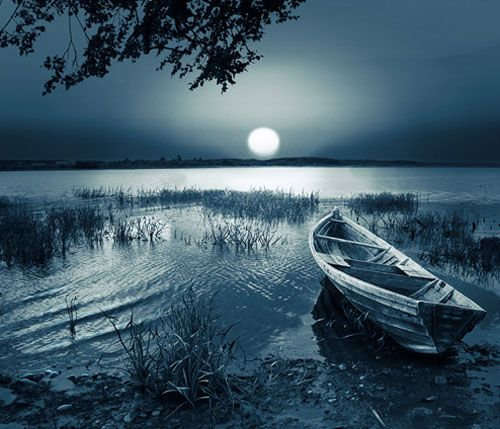 I would love to learn how to take nightime/moonlight pictures like this-- on my bucket list to take a photography class ...