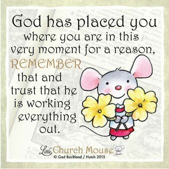 ✣✣✣ God has placed you where you are in this very moment for a reason, Remember that he is working everything out. Amen...Little Church Mouse 13 Nov. 2015 ✣✣✣