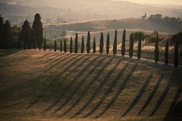 Ellan Toscana - Ella Kanninen - #kirja #EllanToscana Photo by Ofer Amir