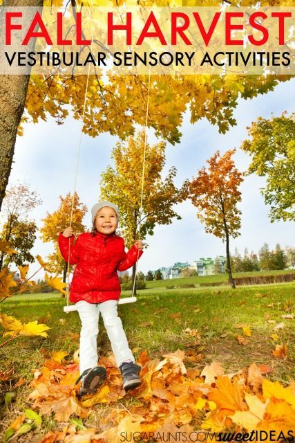 Try these vestibular sensory activities with the family this Fall