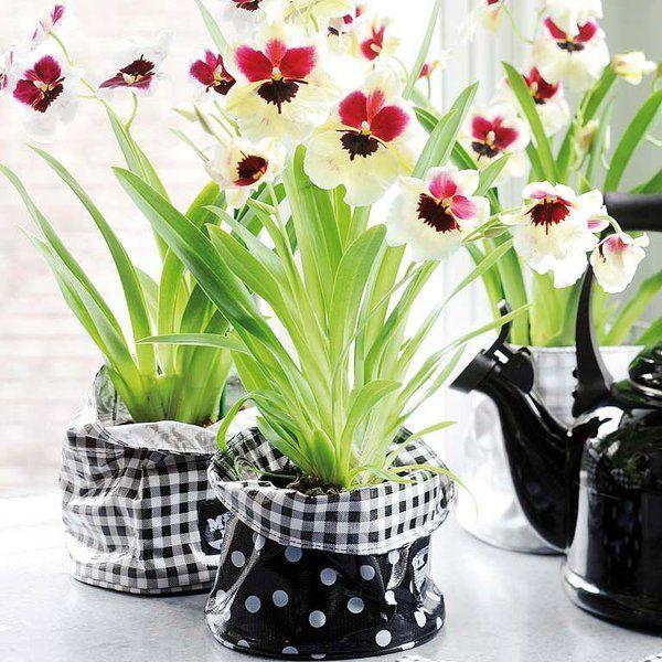 11 best macetas caseras images on pinterest fabrics for Macetas originales para plantas