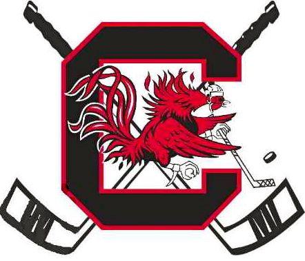 Tiger Hockey Logo   D3: Gamecock Ice Hockey Sweeps Clemson   ACHA Talk