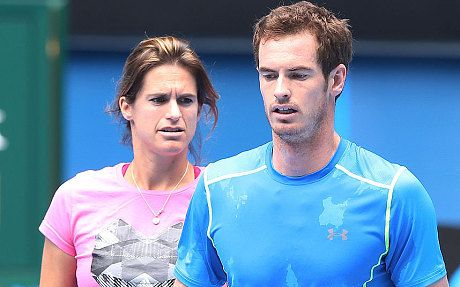 Andy Murray v Tomas Berdych, Australian Open semi-final: live - Telegraph