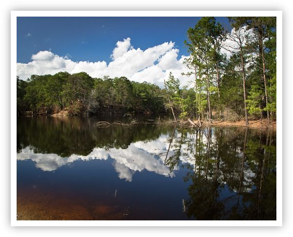 Lake Bastrop at Bastrop State Park. Photo by Jeff Lynch. #Bastrop #Texas #statepark #lake