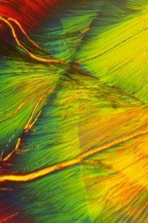 Microscoopfoto van een Fluoriet