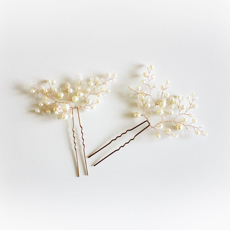 Shifting branches hair clips