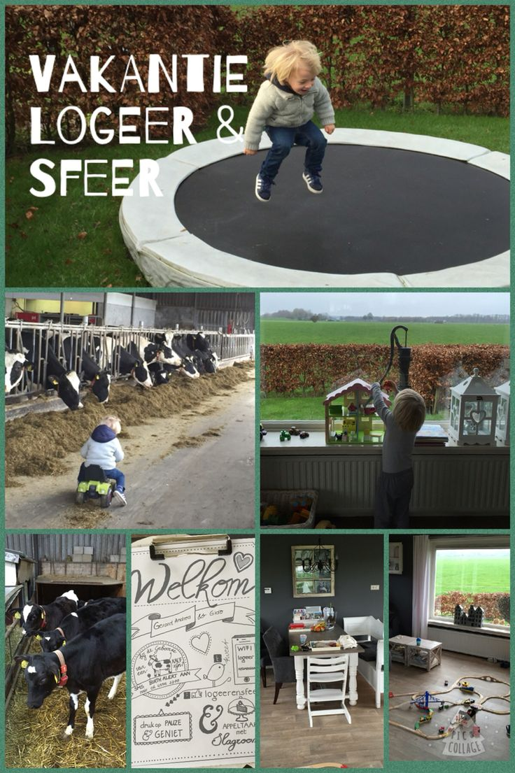 www.logeerensfeer.nl Een heerlijk ruim huis op het erf bij de boer, waar het je aan werkelijk niets ontbreekt!