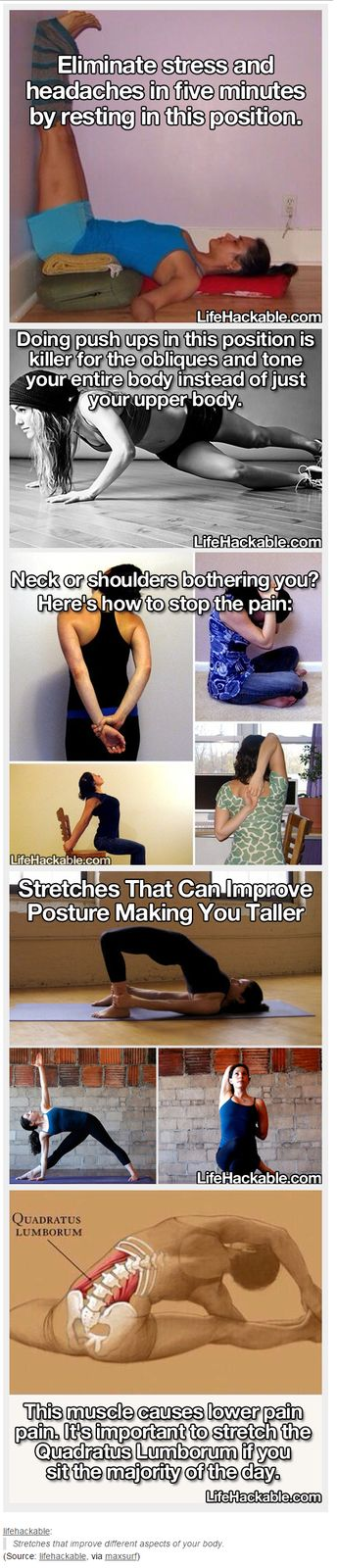 Stretches that improve different aspects of your body