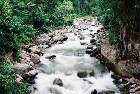 Sungai adalah aliran air yang besar dan memanjang yang mengalir secara terus menerus dari hulu (sumber) menuju hilir (muara)