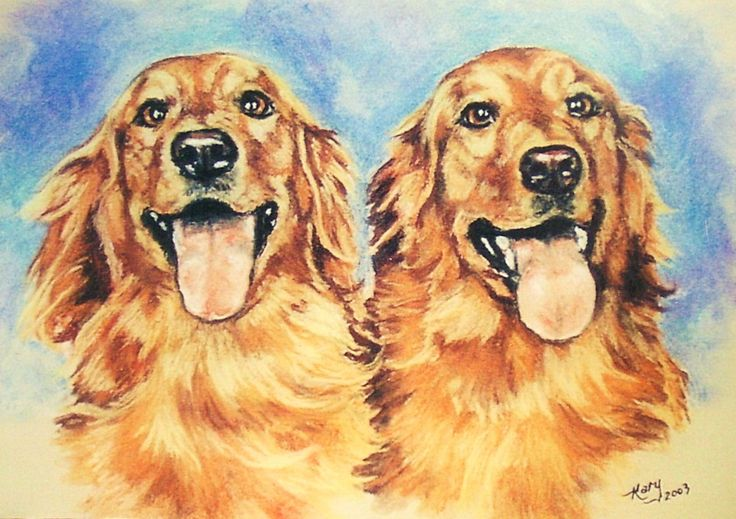 Goldens By Kary