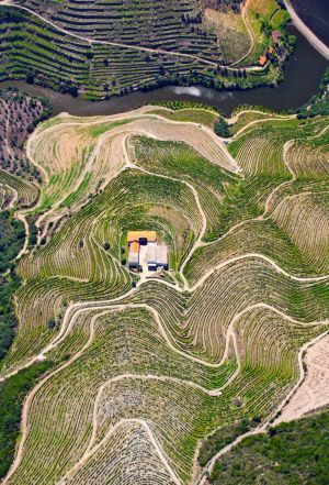Why kayaking has become a popular way to travel Portugal - via The Sydney Morning Herald 25-06-2017 | Michael Gebicki kayaks along Portugal's Douro River, the regional home of port. Photo: An aerial shot of a vineyard shows the stepped terraces where the grapes grow.