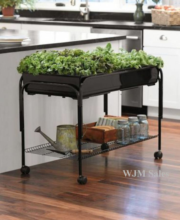 Mobile Raised Planter Box Bed Patio Herb Garden Flower Plant Shelf  Self Water