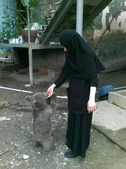 Nun feeding a cub.