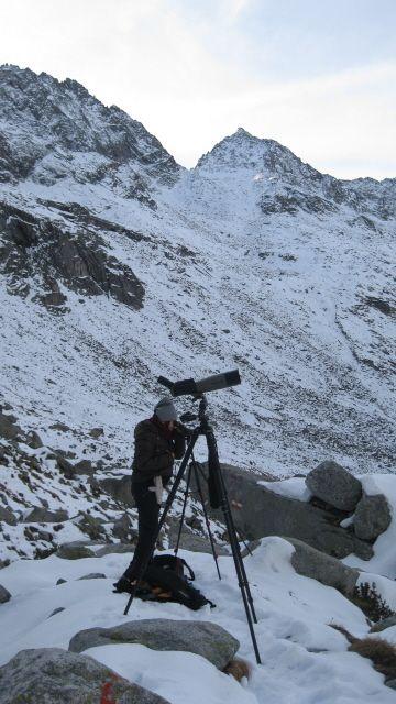 Punto di osservazione in alta Val Salarno (foto di M.Canziani) alle prime luci dell'alba, Censimento Stambecco Adamello 2013 (www.uomoeterritoriopronatura.it).