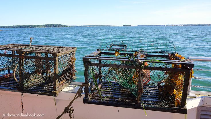 Lobster Fishing Adventures in Maine - The World Is A Book