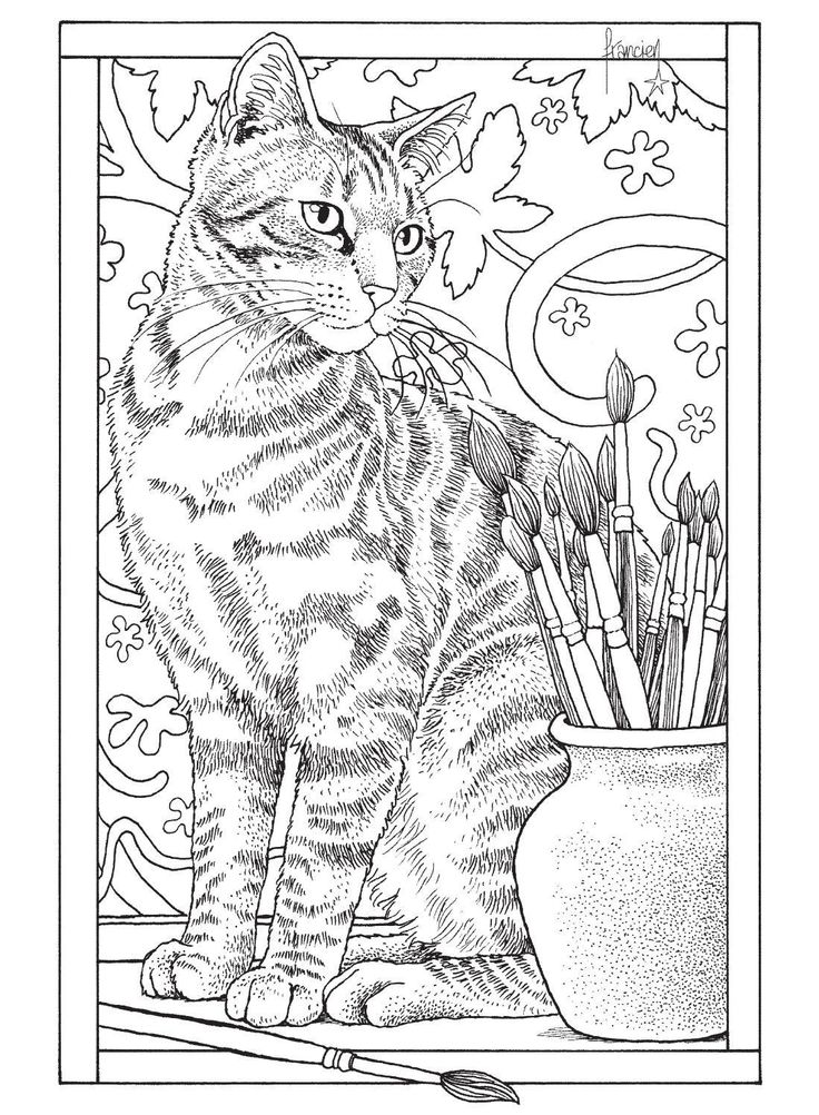 185 best Coloring Pages - Cats and Kittens images on Pinterest - best of coloring page of a hair brush