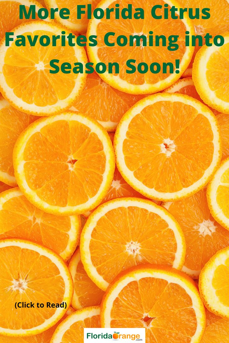 More Florida Citrus Favorites Coming into Season Soon