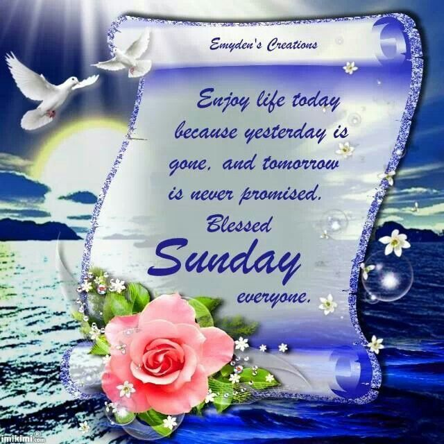 Sunday...:)