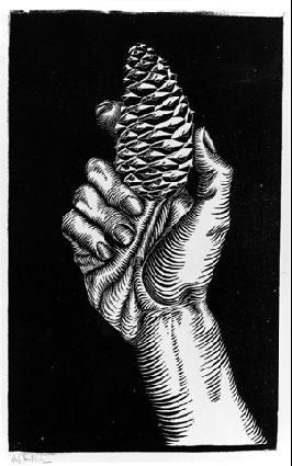 M.C. Escher – Hand with Fir Cone