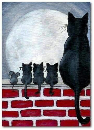 Feline Family And Friend Watching The Moon.