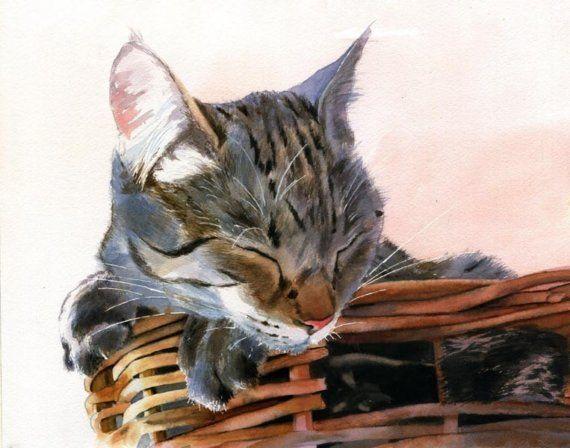 Marrone grigio Tabby Cat Art Print di mio di rachelsstudio su Etsy