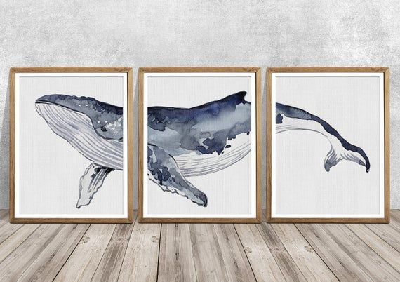 Humpback Whale Humpback Whale Art Set Of 3 Humpback Whale Etsy In 2020 Whale Art Whale Wall Art Whale Art Print