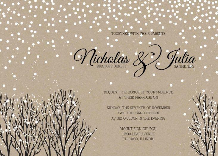 Winter Wedding Invitation Wording: 31 Best Wedding Themes For Winter Images On Pinterest