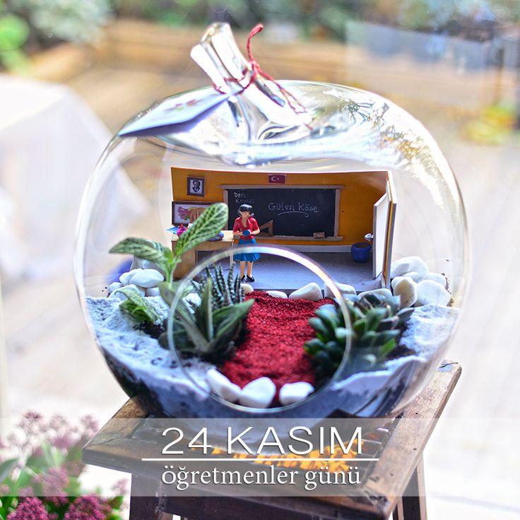 Öğretmenler Günü temalı teraryum - Teachers appreciation day terrarium - Lunlun Çiçek