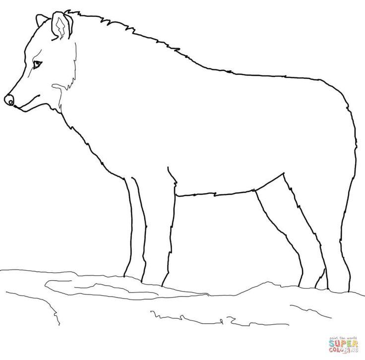 dibujos siluetas de animales | Disegno di Il lupo artico da colorare | Disegni da colorare e stampare ...