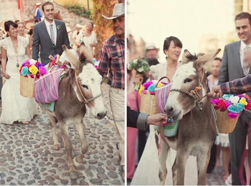 Donkey wedding