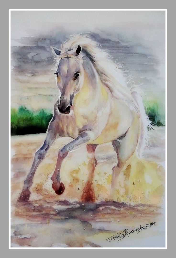Koń w galopie Akwarela 2018 r. autor: Teresa Kopańska