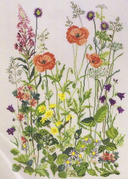 Colourful wild flowers with rose bay willowherb, harebell, colt's foot, daisies, cow parsley as well as poppies.