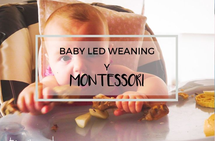 Baby Led Weaning y Montessori