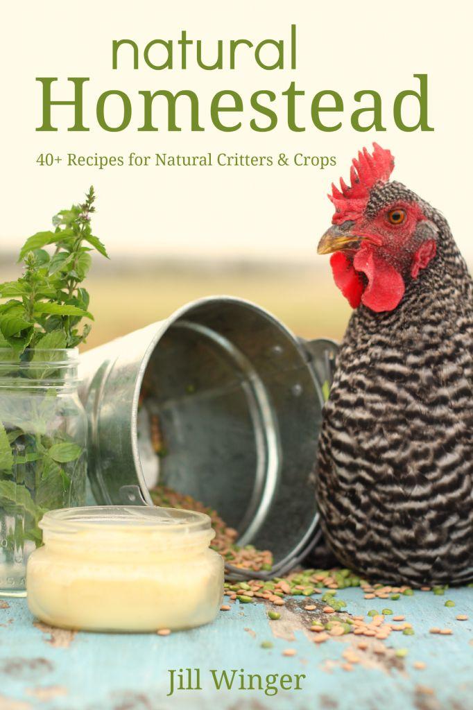 create a natural homestead