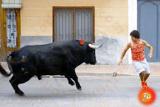 torodigital: La población de La Vilavella inicia sus festejos ...