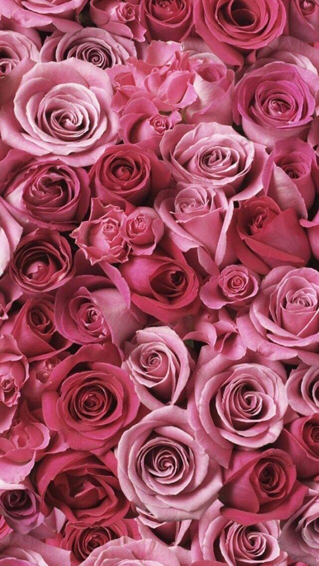 Cashmere Silk Scarf - Red Rhododendron CS by VIDA VIDA Mk5HxeZ