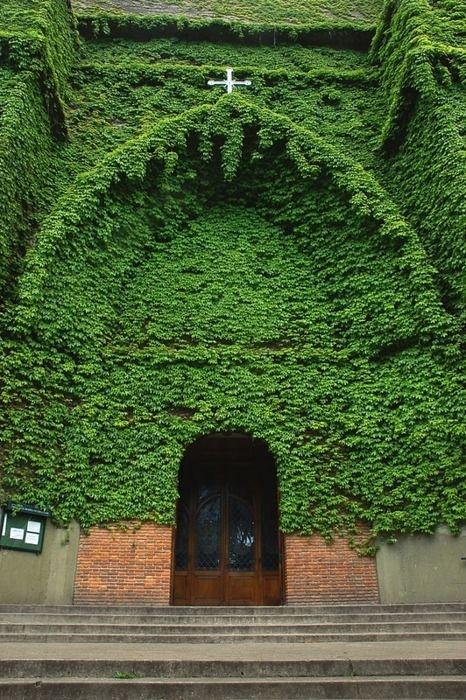Green Church - Buenos Aires, Argentina