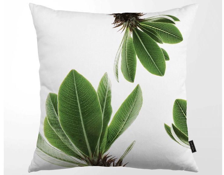 Kuddfodral Tropisk Kaktusblad, CLINTON FRIEDMAN