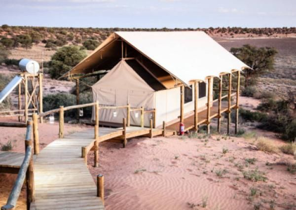 Gallery: Connecting with the Kalahari - IOL Travel Africa | IOL.co.za