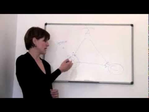 La terapia cognitivo-comportamentale - YouTube