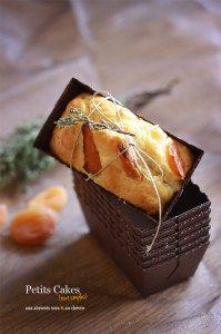 Cake-abricots-secs-et-chèvre