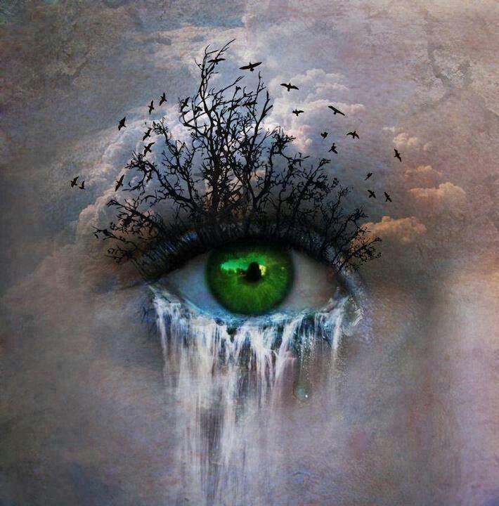 Wat bijzonder is aan deze afbeelding dat de wimpers bestaan uit bomen en de tranen een waterval