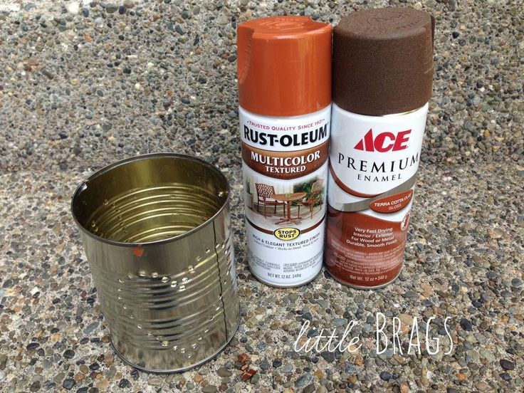 How to Make Rusty Tin Can Lanters