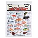 104111 - Freshwater and Saltwater Pan-Fish Chart…