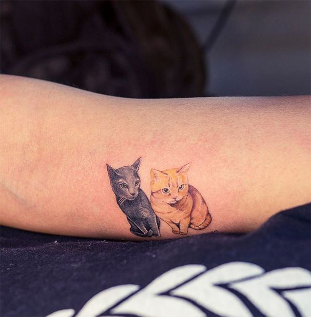 #tattoofriday - Gatos - Cats by Sol Tattoo, Coréia do Sul