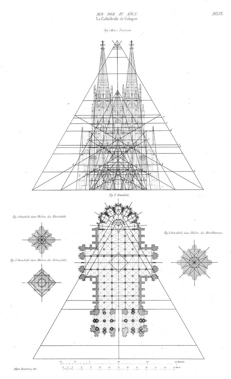 Elevation and plan of the Cathedral, Cologne