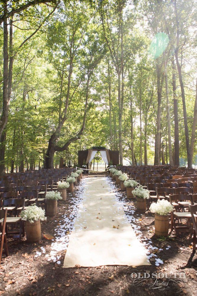 Chapel-in-the-Woods - Louisburg, NC, United States. Beautiful wedding venue under a canopy of trees!