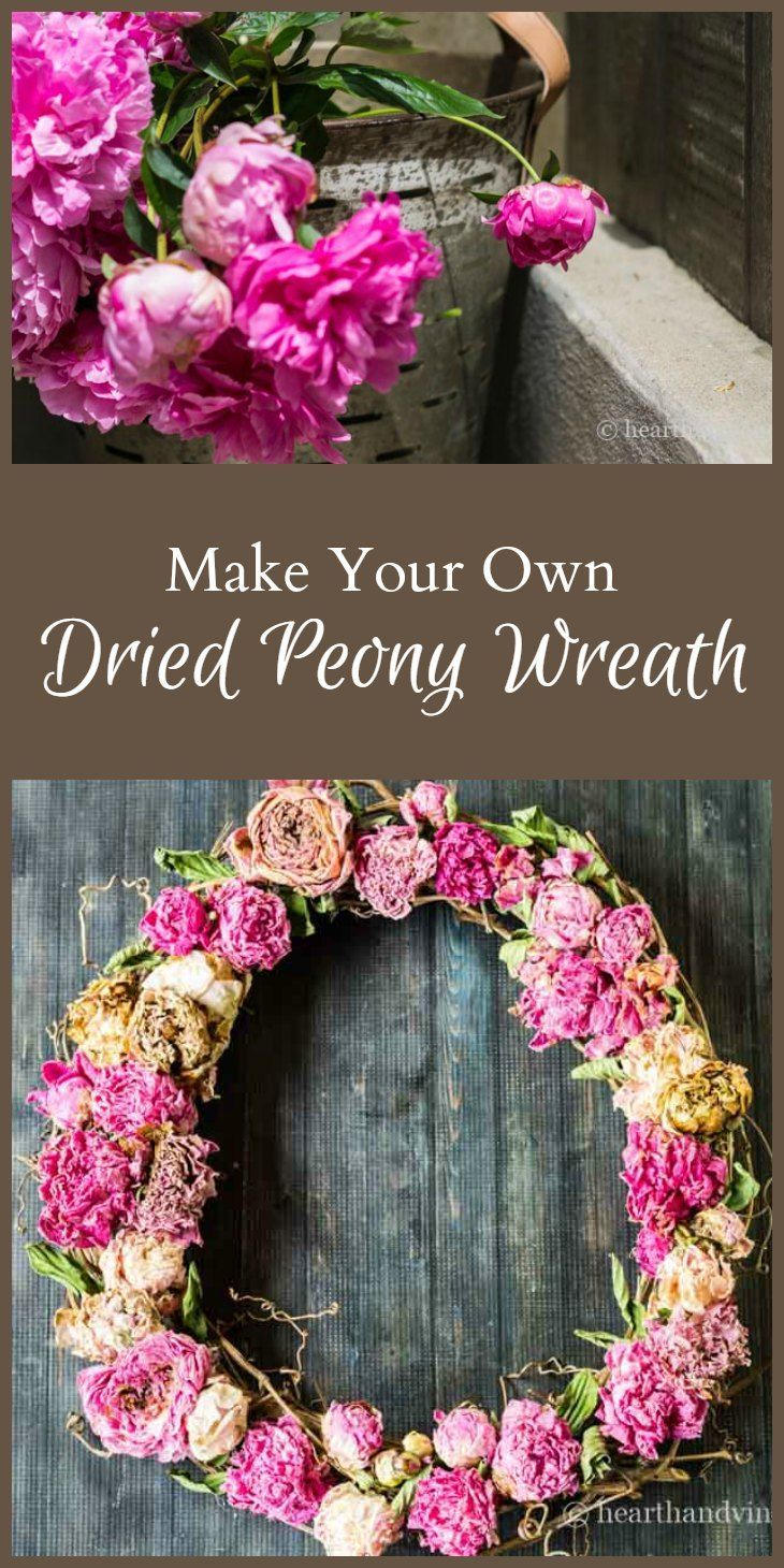 Learn how easy it is to dry peony flowers from your garden and make a beautiful wreath with little money and not a lot of time.